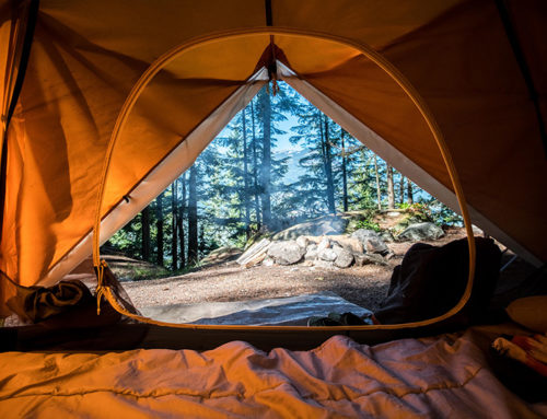 Registration Now Open for Arizona's Family Campout Spring Season