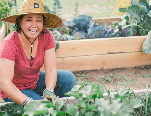 Gardening for Food Security – and Stress Relief