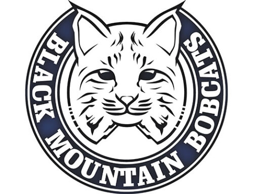 Black Mountain Elementary School named an A+ School of Excellence