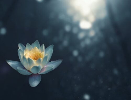 The Benefits of Hypnosis, Process Healing and Meditation