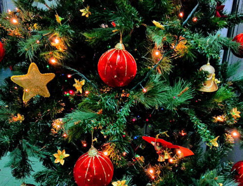 A 40-year North 32nd Tradition of Giving Continues with Christmas Trees