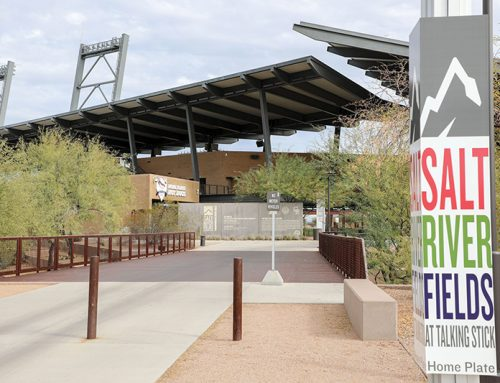 Planning on Attending Spring Training Games? Here's What You Should Know