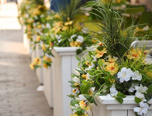 Four Ways to Improve Curb Appeal This Spring