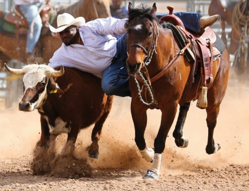 Arizona Black Rodeo Shares African-American Western History, Culture