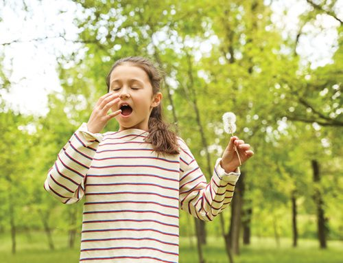 Naturopathic Support for Seasonal Allergies