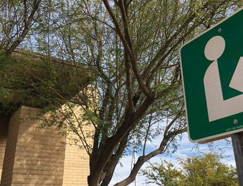 Phoenix Public Library Branches Resume Limited In-Building Visits